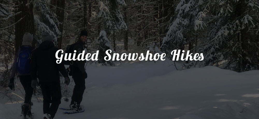 Guided Snowshoe Hikes