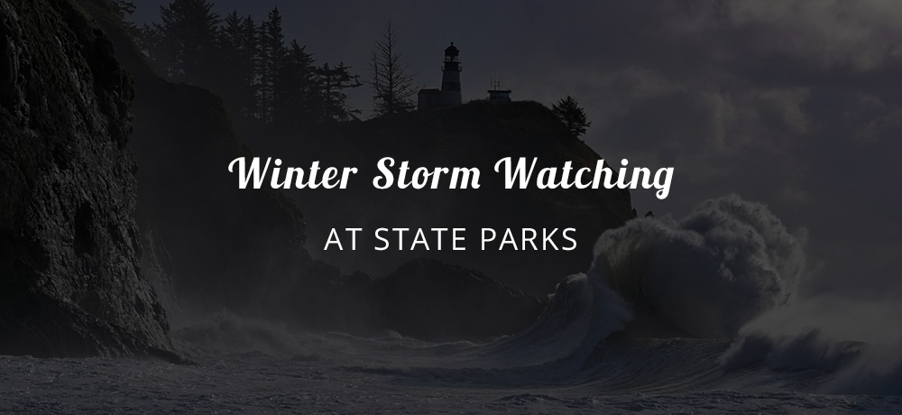 Winter Storm Watching at State Parks