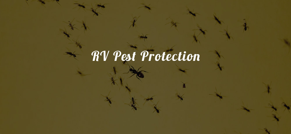 RV Pest Protection